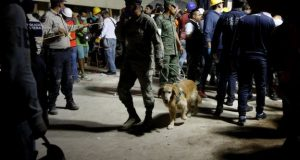 A soldier with a sniffer dog at the collapsed primary school