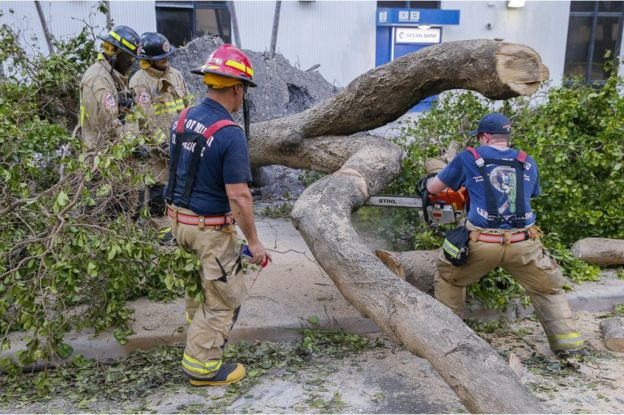 Firefighters have been sawing up fallen trees in Miami